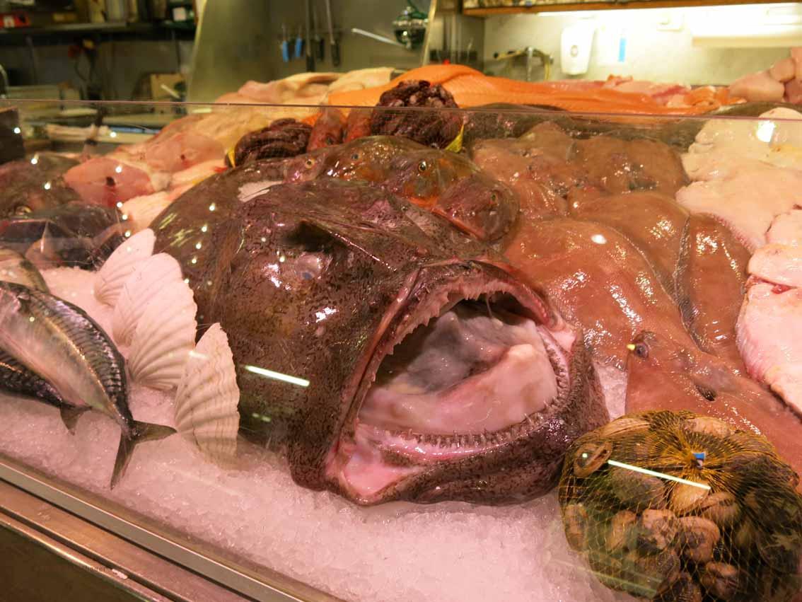Fischeinkauf